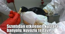 Sızıntıdan etkilenen kuşlara banyolu, kuvözlü tedavi