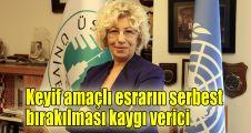 Prof.Dr. Sevil Atasoy: Keyif amaçlı esrarın serbest bırakılması kaygı verici