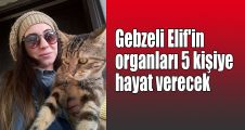 Gebzeli Elif'in organları 5 kişiye hayat verecek