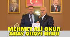 Mehmet Ali Okur aday adayı oldu