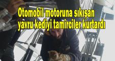Otomobil motoruna sıkışan yavru kediyi tamirciler kurtardı