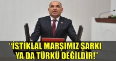 Tarhan: İstiklal marşımız şarkı ya da türkü değildir!
