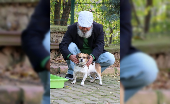 Nefessiz kalan köpeği kalp masajıyla hayata döndürdü