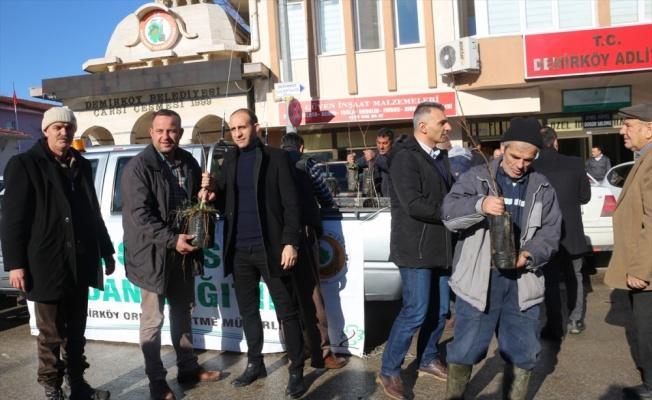 Demirköy'de 500 fidan dağıtıldı
