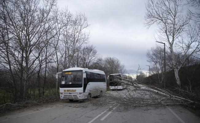 Edirne'de şiddetli rüzgar etkili oluyor