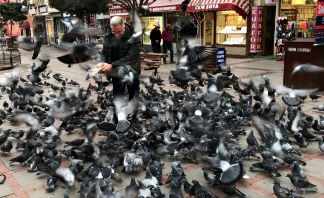 Teknisyen Necdet 10 yıldır Edirne'nin güvercinlerini besliyor