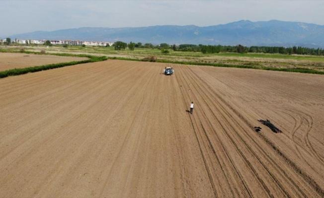 Çeyrek asırdır ekilmeyen arazilerinde tarım yapılacak
