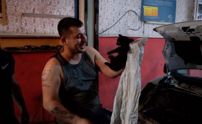 Araca sıkışan kediyi 8 saatte kurtardılar