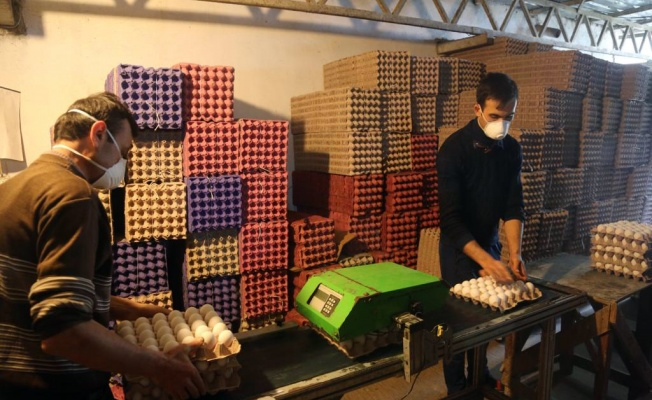 Kocaeli'de ihtiyaç sahibi vatandaşlara 30 bin yumurta ve 25 ton sebze dağıtıldı