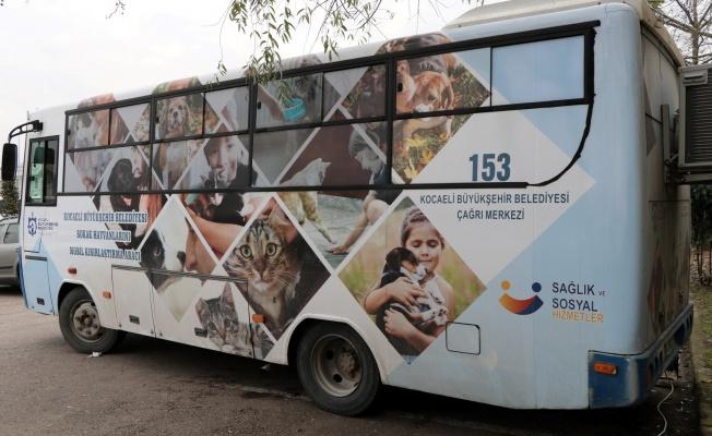 Mobil Kısırlaştırma Aracı hayvanseverlerden takdir topluyor