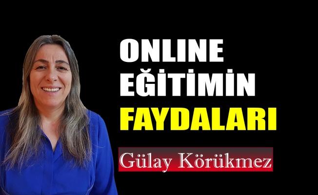 Online eğitimin faydaları