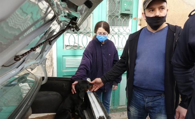 Otomobil bagajına bırakılan köpek yavrusu vatandaşları harekete geçirdi