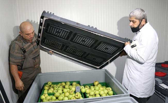 Türk mühendislerin geliştirdiği cihazla hasat sonrası kayıp azaltılacak