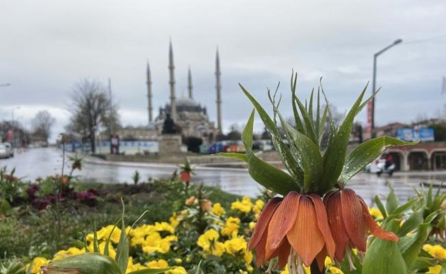 Edirne'de sağanak etkili oluyor