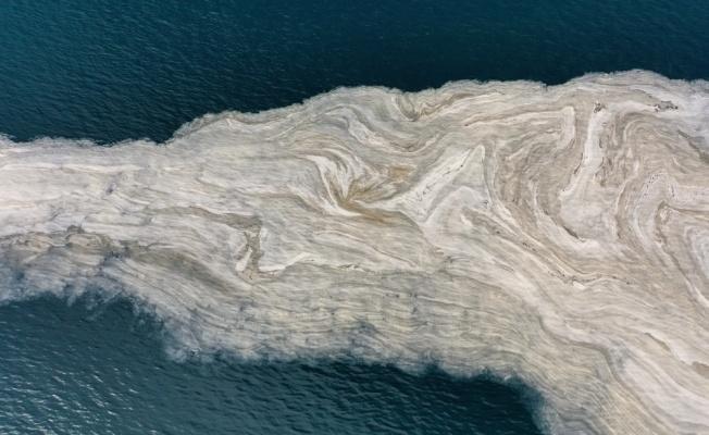 İzmit Körfezi'nde deniz salyası beyaz tabaka oluşturdu