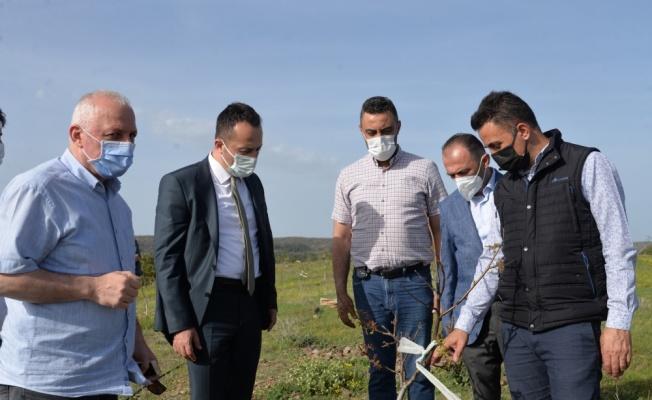 Bilecik'te tarım arazileri üretime kazandırılacak