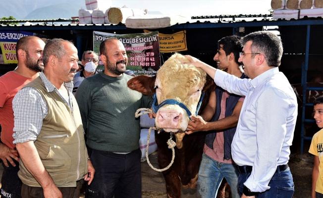 Bursa Yıldırım'da kurban pazarına ziyaret