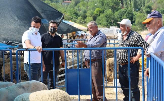 İl Tarım ve Orman Müdürü Yoldaş, Pazaryeri'ndeki kurbanlık pazarını ziyaret etti