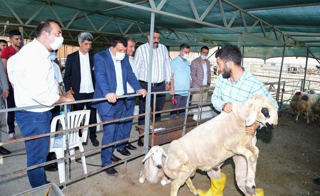 Malatya'da canlı hayvan pazarına ziyaret