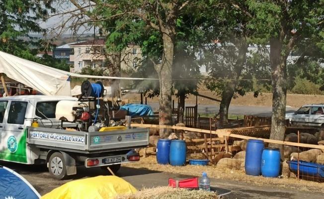 Süleymanpaşa'da kurbanlık pazarı dezenfekte edildi
