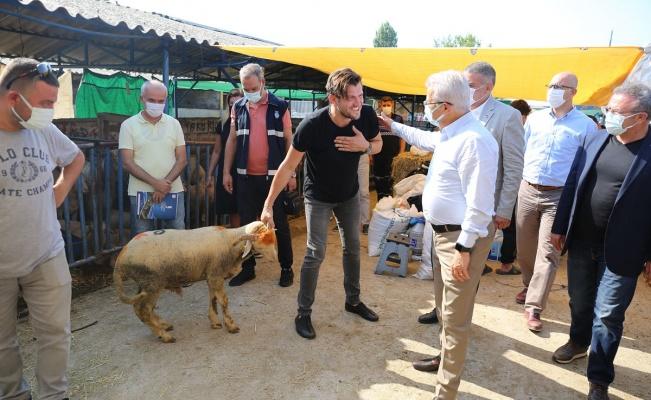 Turgay Erdem'den hayvan pazarına ziyaret