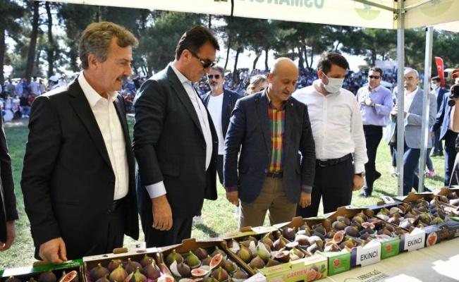 Bursa Osmangazi'de 'kara incir'e yakışan festival