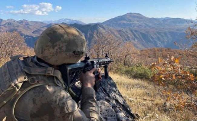 Eren-2'de 2 PKK'lı etkisiz halde