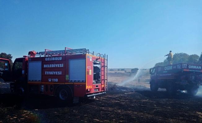 Gelibolu'da çıkan anız yangını söndürüldü