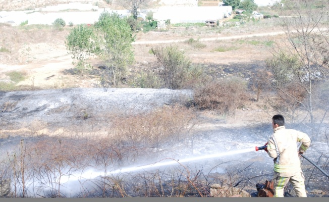 Pendik'te otluk alanda çıkan yangın itfaiye ekiplerince söndürüldü