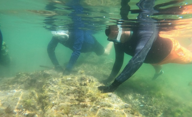 Yalova'daki su altı kazıları tarihe ışık tutacak