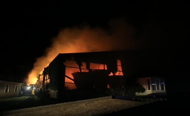 GÜNCELLEME - Kırklareli'nde hayvan çiftliğinde çıkan yangın kontrol altına alındı