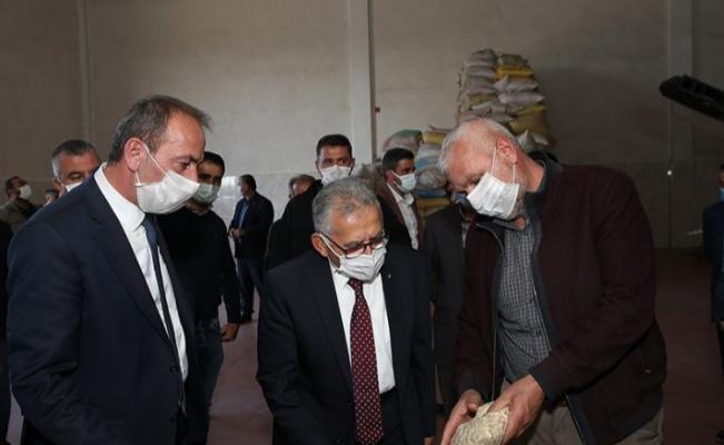 Kayseri Erciyes eteklerinde kabak çekirdeği hasadı