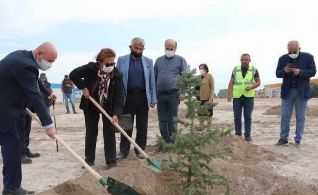 Kayseri Kocasinan'da yeşil kampanya