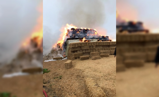 Kırklareli'nde yıldırım isabet eden 500 saman balyası yandı
