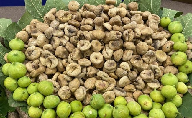 Kuru incir ihracatında hedef 65 bin ton