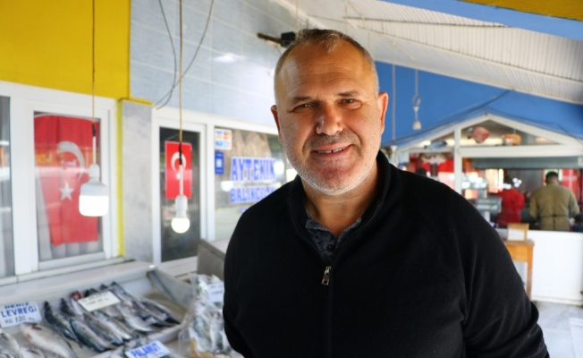 Marmara'da lüfer bollaştıkça tezgahtaki fiyatı da düşüyor