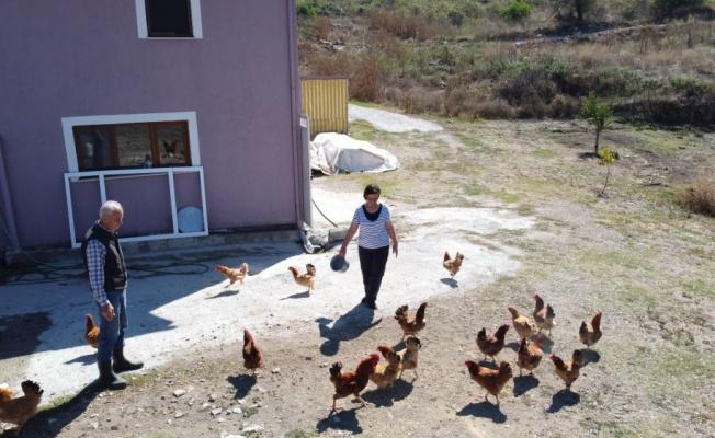 Yarım asır sonra döndüğü köyünde eşiyle doğal bir hayat sürüyor