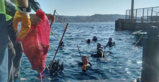 Gönüllü dalgıçlar su altı temizliği yaptı