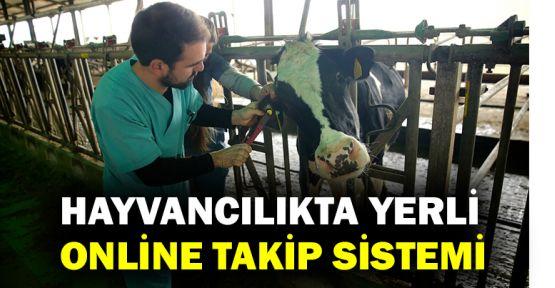 Hayvancılıkta yerli online takip sistemi