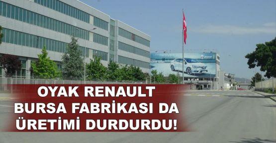 Oyak Renault Bursa fabrikası da üretimi durdurdu!