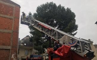 Bodrum katında yangın çıkan apartmanda mahsur kalanları itfaiye kurtardı