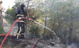 Bursa'da ormanlık alanda çıkan yangına müdahale ediliyor