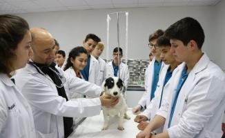 Geleceğin veteriner sağlık teknisyenlerinin okuluna klinik ve ameliyathane kuruldu