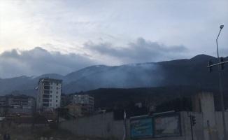 Uludağ'da çıkan orman yangını kontrol altına alındı