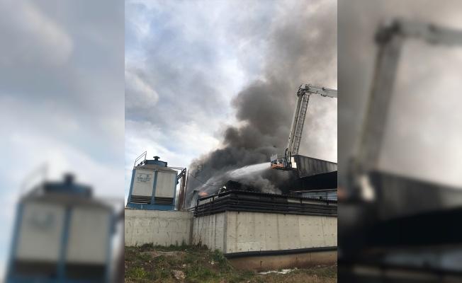 Kocaeli'de endüstriyel geri dönüşüm fabrikasında yangın