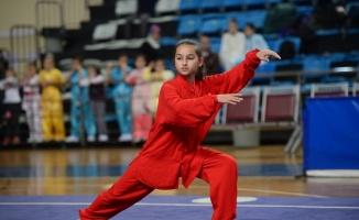 Wushu Kung Fu Geleneksel Türkiye Şampiyonası, Sakarya'da başladı