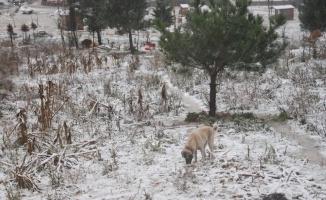İstanbul'un yüksek kesimlerinde kar etkili oluyor