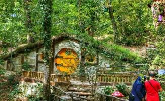 Ormanya 2019'da 7 milyonu aşkın ziyaretçi ağırladı