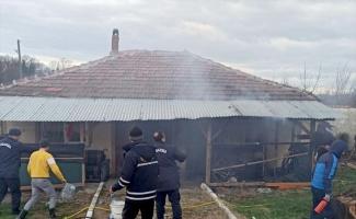 Ev yangınında dumandan etkilenen kadın hastaneye kaldırıldı