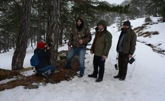 Kazdağları'ndaki yaban hayatı fotokapanlarla araştırılacak
